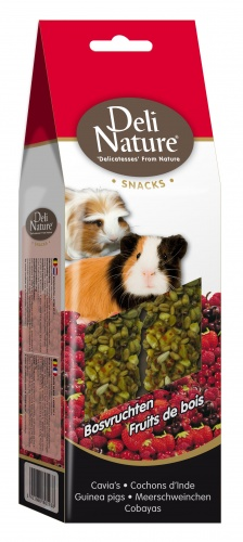 Deli Nature Rabbit & Guinea Pig Snacks Forest Fruits