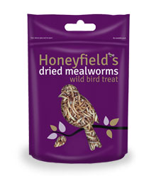 Mealworms (Bag)