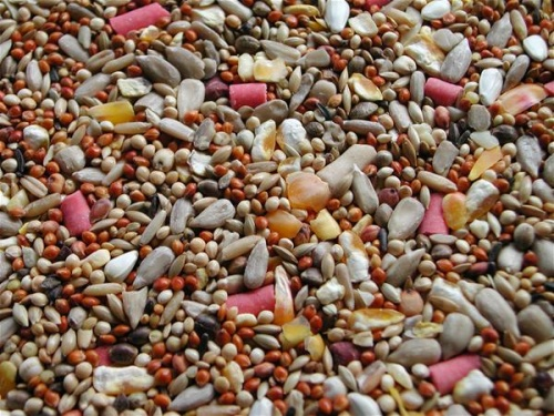 No Mess Wild Bird Seed Mix