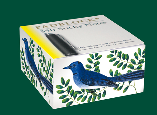Blue Bird Sticky Notes Block