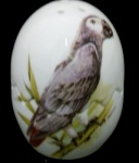 African Grey Salt/Pepper Split Egg
