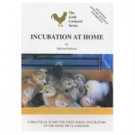 Incubation at Home: Michael Roberts