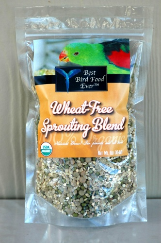 Best Bird Food Ever Wheat Free Sprouting Blend