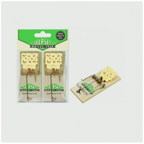 Self Set Wooden Mouse Traps
