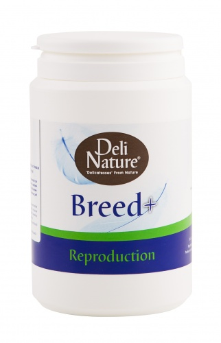 Deli Nature Breed + (Reproduction) 500g