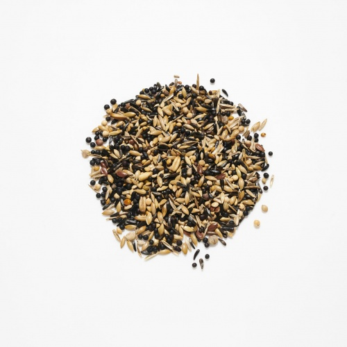 Countrywide Goldfinch & Siskin Seed Mix