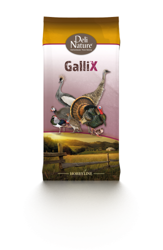 Deli Nature Gallix Ornamental Power Mix 4kg
