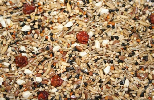 Countrywide Bullfinch Mix