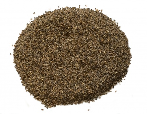 Chicory seed 500g