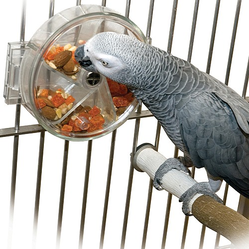 Original Parrot Foraging Wheel