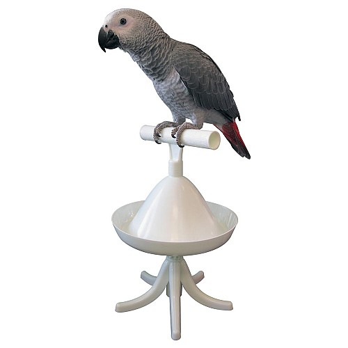 The Percher : Portable Parrot Training Perch