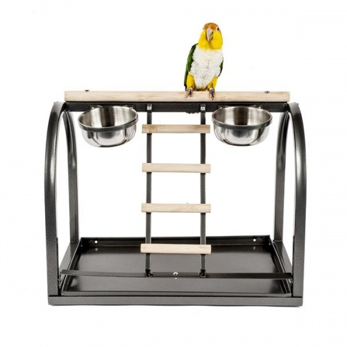 Deluxe Tabletop Parrot Playstand