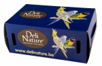 Bird Transport Box (Card) Large